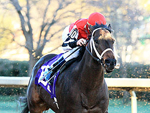 Ride On Curlin - Allowance Win, January 12, 2014.