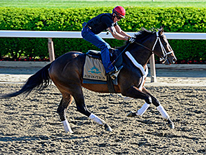 Ride On Curlin - Belmont Park, June 6, 2014.