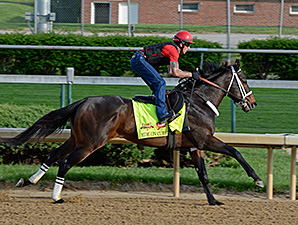 Ride On Curlin preps at Churchill Downs for the Kentucky Derby April 27.