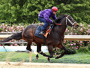 Ride On Curlin works April 6th.