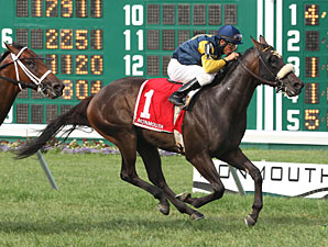 Rip Roarin Ritchie wins the Tyro Stakes.