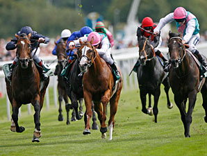 Rip Van Winkle wins the 2010 Juddmonte International.