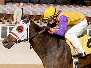 Ripe Tomato wins the 2009 Powerless.