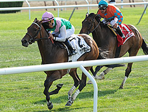 Riposte wins the 2014 New York Stakes.