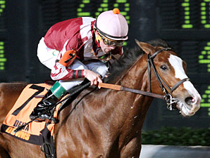 Rise Up wins the 2013 Jean Lafitte Stakes.