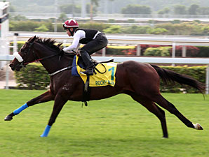 Rocket Man in Hong Kong on December 7, 2011.