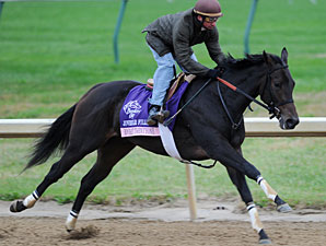 Rocket Twentyone, Churchill Downs, Oct 28, 2011.