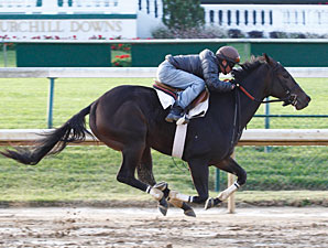 Rocket Twentyone works at Churchill Downs, October 21, 2011.