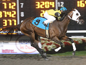 Rollicking Affair wins the 2009 HBPA Stakes at Presque Isle Stakes.