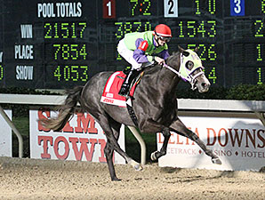 Roman Unbridled wins the 2014 Big Drama Stakes.