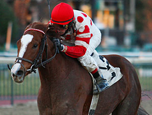 Romantic Hideaway wins the 2009 Bradywine Stakes.
