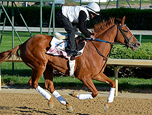 Rosalind - Churchill Downs, April 23, 2014.