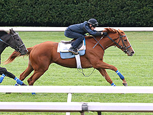 Rosalind at Keeneland, October 9, 2014