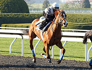 Rosalind - Keeneland Work, April 19, 2014.