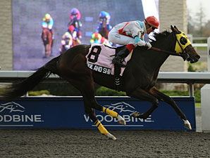 Rose and Shine wins the 2011 Princess Elizabeth.