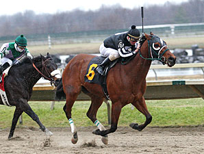 Royal Currier wins the 2011 Valley Forge Stakes.