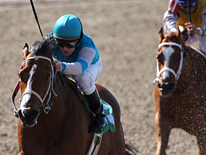 Royal Express wins the 2010 Black Gold.