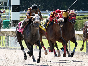 Rule Number Six wins the 2013 Sumter Stakes.