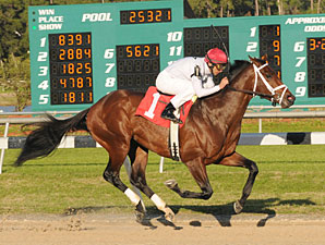 Rule wins the 2010 Sam F. Davis.