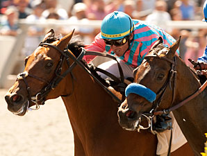 Rumor wins the 2011 C.e.r.f. Stakes.