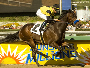 Runflatout Maiden win 01/29/2011