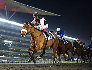 Russian Soul wins the 2014 Al Shindagha Sprint.