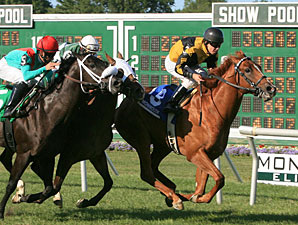 Rustler Hustler wins the 2010 Continental Mile.
