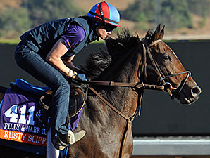 Rusty Slipper - Breeders' Cup 2014.