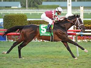 Rydilluc wins the Palm Beach Stakes.