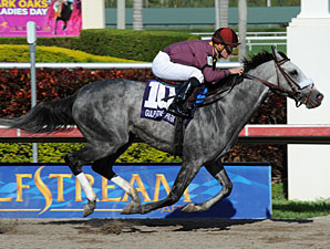 S. S. Stone in the 2011 Skip Away Stakes.