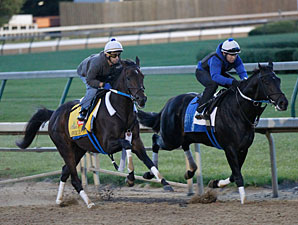 Sabercat at Churchill Downs 4/23/2012