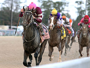 Sabercat wins the 2011 Delta Downs Jackpot.
