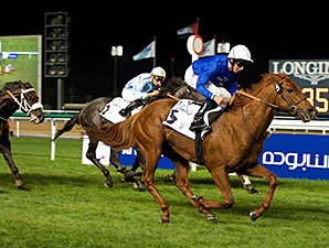 Safety Check wins the 2015 Zabeel Mile.