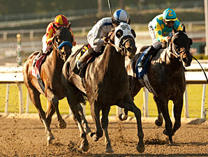 Sahara Sky wins the 2013 San Carlos.