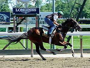 Samraat preps for the Belmont Stakes.