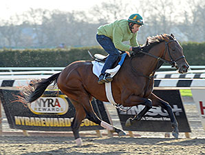Samraat - Belmont Park, April 25, 2014