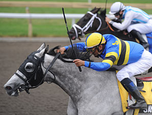 Sand Cove wins the 2010 Seagram Cup.