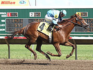 Santo Gato wins the 2012 Honor the Hero Turf Express Stakes.
