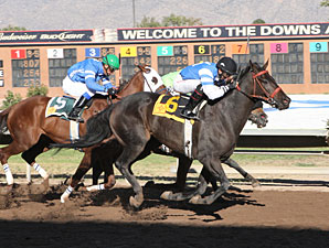 Sapello Cantador wins the 2012 University Of New Mexico Handicap.