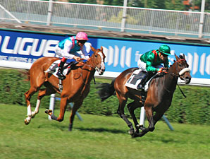 Sarafina wins the Prix Corrida.