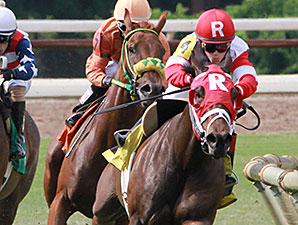 Sassy Kitten wins the 2014 River Cities Stakes..