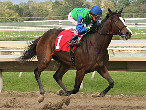 Say a Novena wins the 2011 Brandywine Stakes.