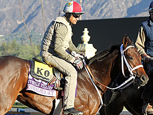 Scandalous Act at Santa Anita - Breeders' Cup 2013
