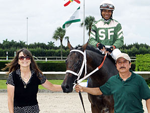 Scandalous Act wins the 2013 Florida Stallion Stakes Desert Vixen Division.