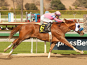 Scherzinger wins the 2014 Santa Monica.