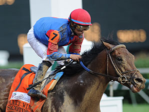 Scotus wins the 2011 Matt Winn