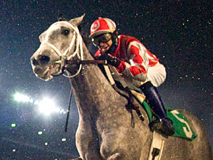 Seans Silverdancer wins the 2010 Pat Whitworth Illinois Debutante.