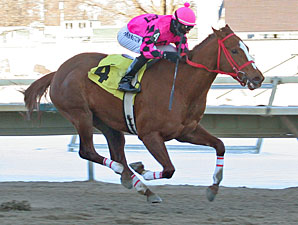 "Seaside Fortune #4 with Frankie Pennington riding won the $42,000 feature race, The ""Chris Evert"" at Philadelphia Park in Bensalem, Pennsylvania February 8, 2010."