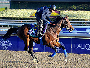 Secret Circle gallops at Santa Anita in preparation for Breeders' Cup, 2013