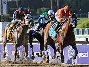 Secret Circle wins the 2013 Breeders' Cup Xpressbet Sprint.